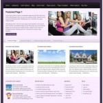 Upgrade to Business Class With the WP-Elegance Premium WordPress Theme